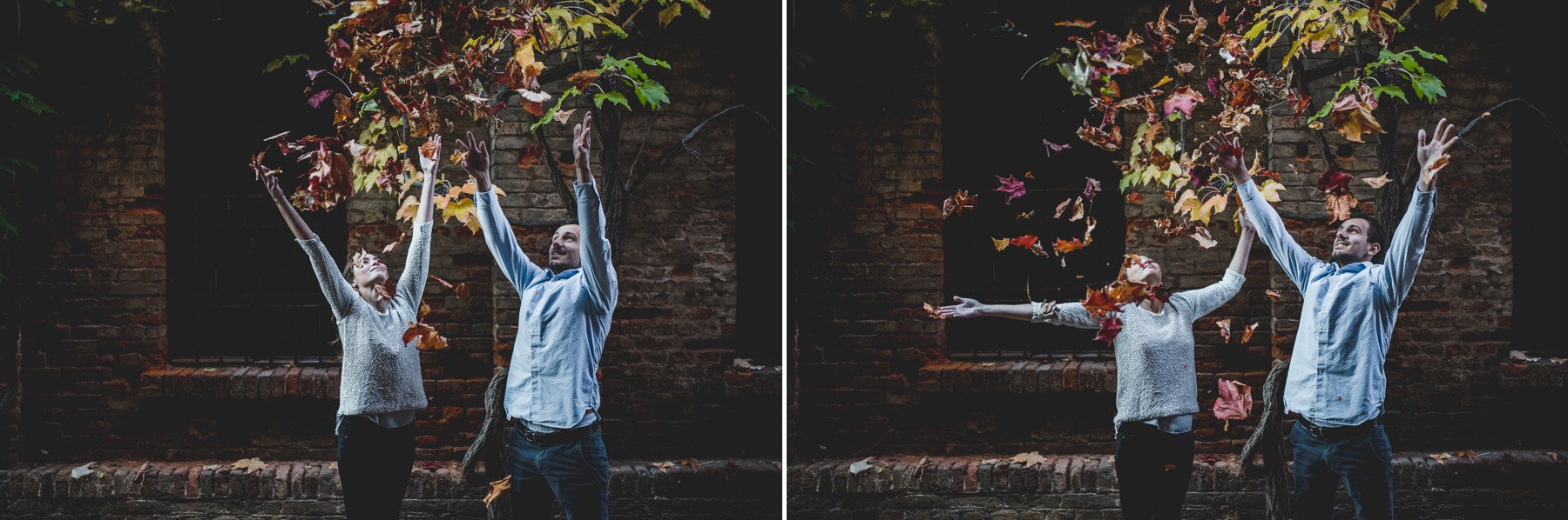 people throw leaves into the air